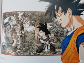 review, art, book, artbook, joesartbooks, joe, dragonball, dragon, ball, akira, toriyama, complete, illustrations, artwork, anime, manga, super, broly, gt, goku, gohan, vegeta