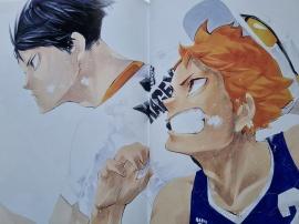 haikyuu, Furudate, Haruichi, art, book, artbook, illustrations, manga, sports, Hinata, Tobio, Karasuno