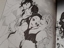 demon slayer, Kimetsu no Yaiba, Koyoharu Gotouge, Gotouge, art, book, artwork, manga, Tanjirou, Nezuko
